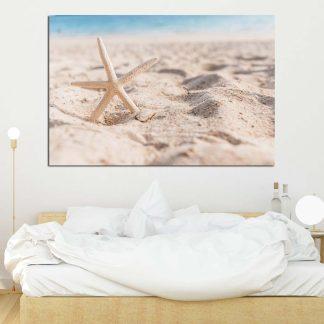 Πίνακας σε καμβά αστερίας στην αμμουδιά
