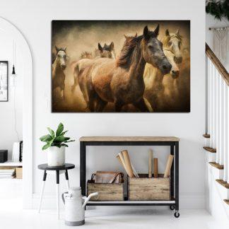 Πίνακας σε καμβά άλογα
