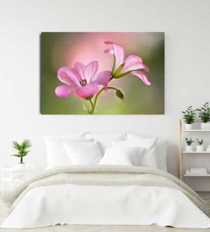 Πίνακας σε καμβά ροζ λουλούδια