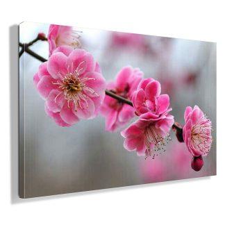 ροζ-λουλουδι-πινακας-σε-καμβα