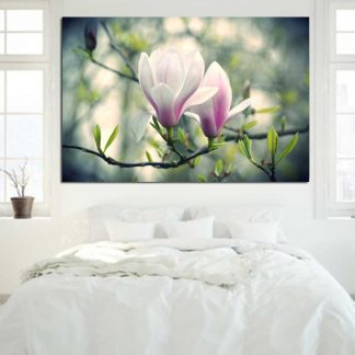 Πίνακας σε καμβά white pink flowers