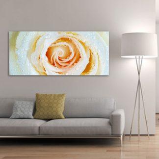 Πανοραμικός πίνακας σε καμβά τριαντάφυλλο