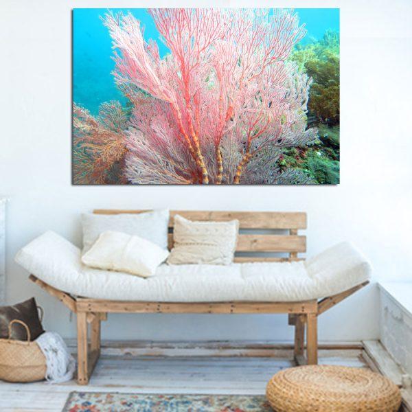 Πίνακας σε καμβά κοράλι