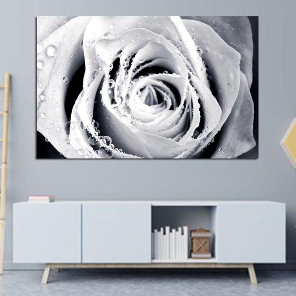 Πίνακας σε καμβά λευκό τριαντάφυλλο
