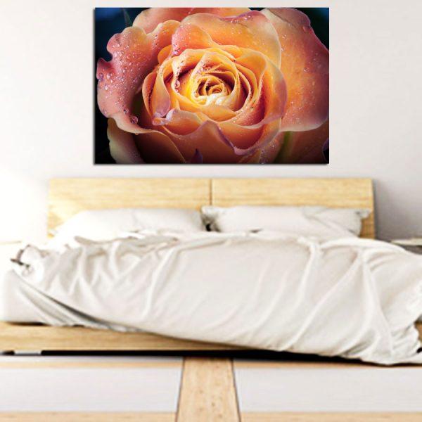Πίνακας σε καμβά πορτοκαλί άνθος