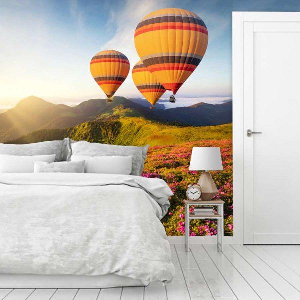 Ταπετσαρία τοίχου βινυλίου αερόστατα