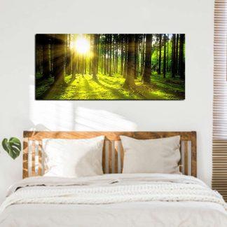 Πανοραμικος πινακας σε καμβα forest sun